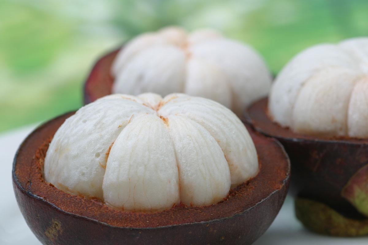 Экзотические фрукты Шри-Ланки мангостин