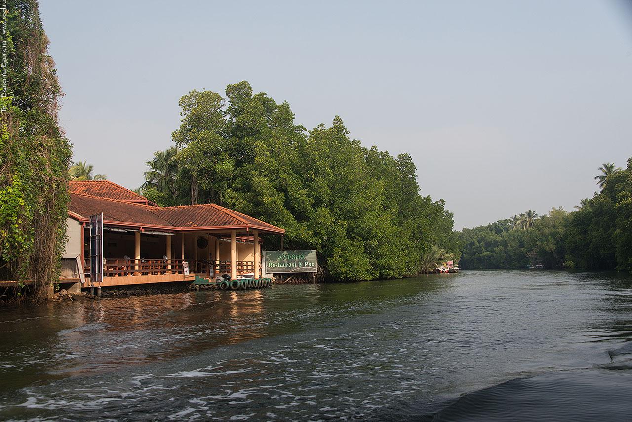 Река Бентота Шри Ланка