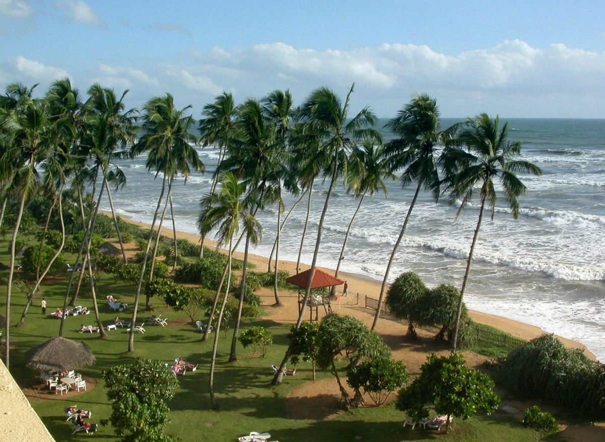 Шри-Ланка погода по месяцам температура воды