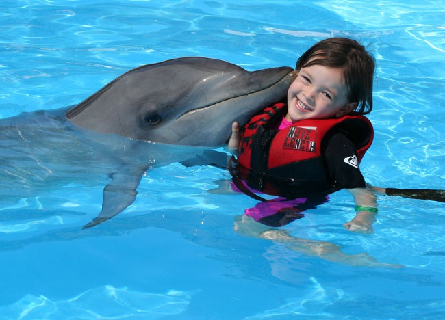 Дельфинарий Сочи парк