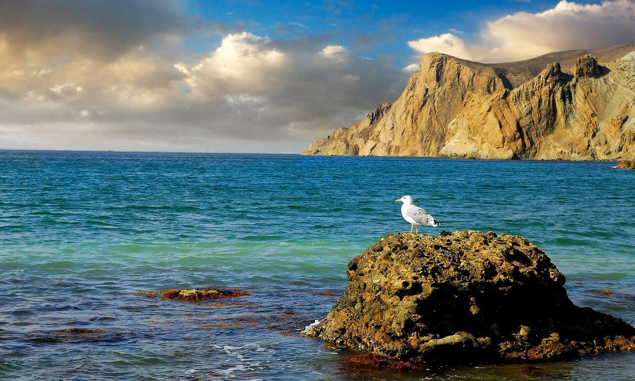 Сочи пляж море