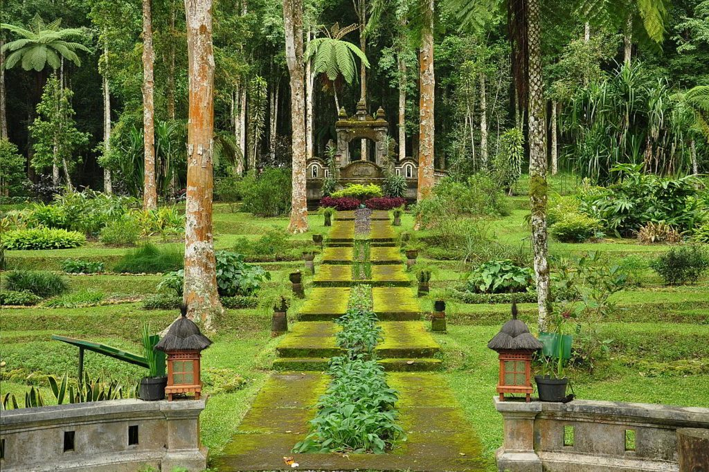 Ботанический сад - одно из чудес Убуда