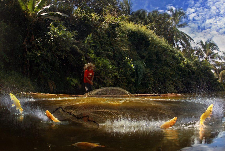 Рыбалка в водных каналах