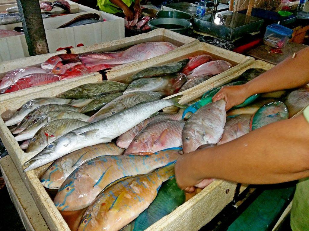 Ассортиментр рыбы