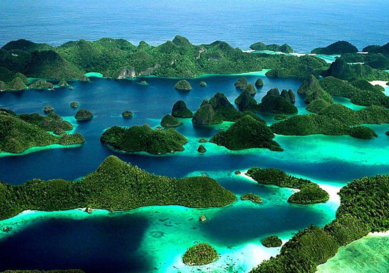 Тропические леса острова