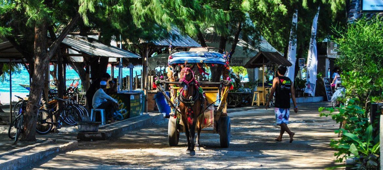 Транспорт для путешествий по острову