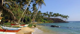 Побережье в Мириссе на острове Шри-Ланка