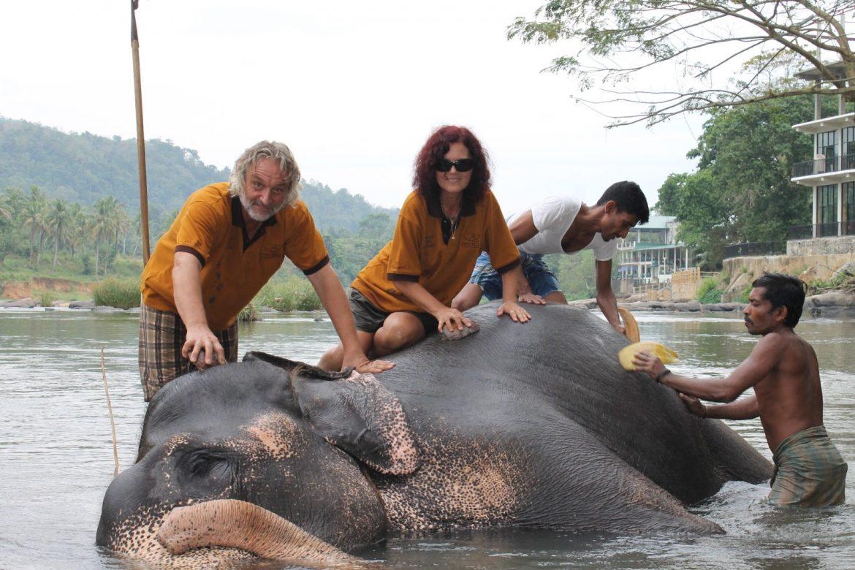 Экскурсия в питомник слонов