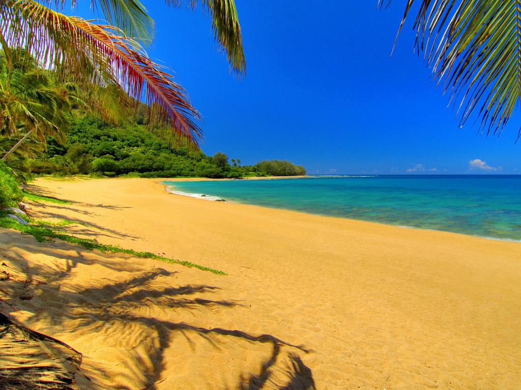 Отдых на пляже в гавайи