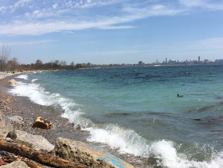 Вид на озеро Онтарио