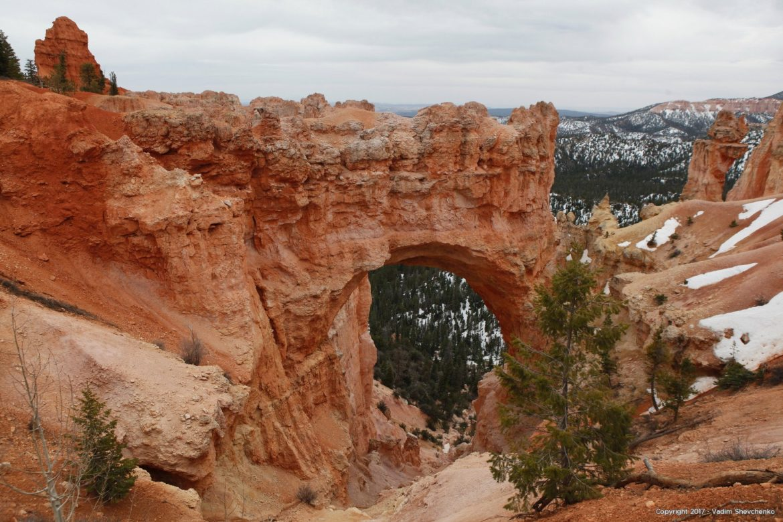 Скалисткая арка