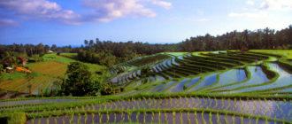 Бали открывает границы